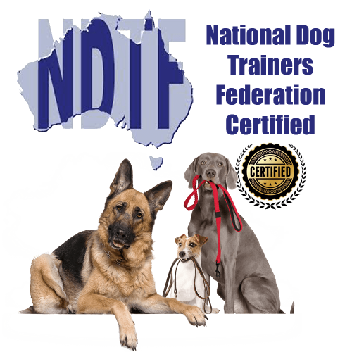NDTF Trainer Certified Cathy Grant Above & Beyond Dog Training & Rehabilitation
